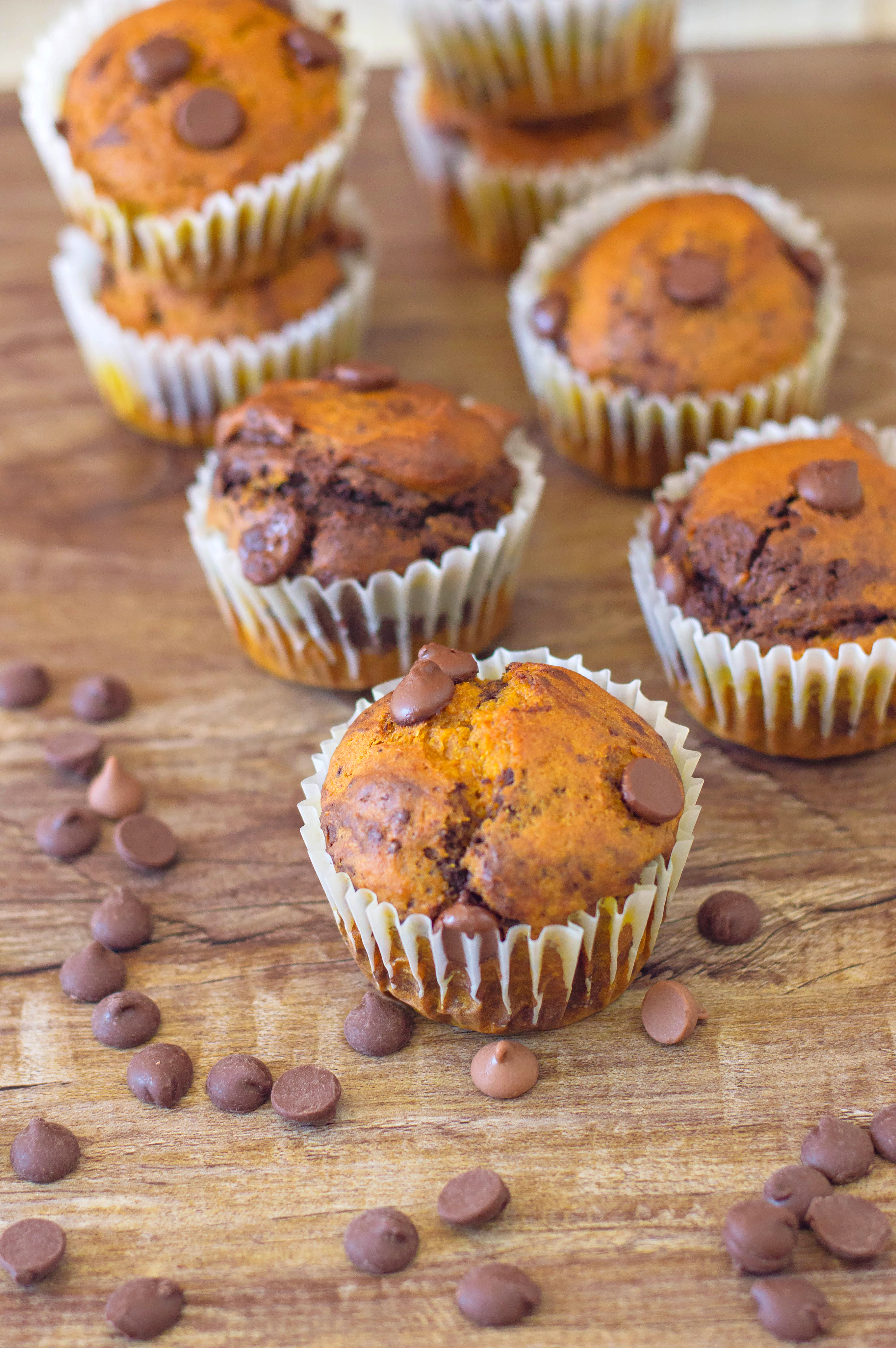 Chocolate Pumpkin Muffins ready to be served on a dessert table for thanksgiving.