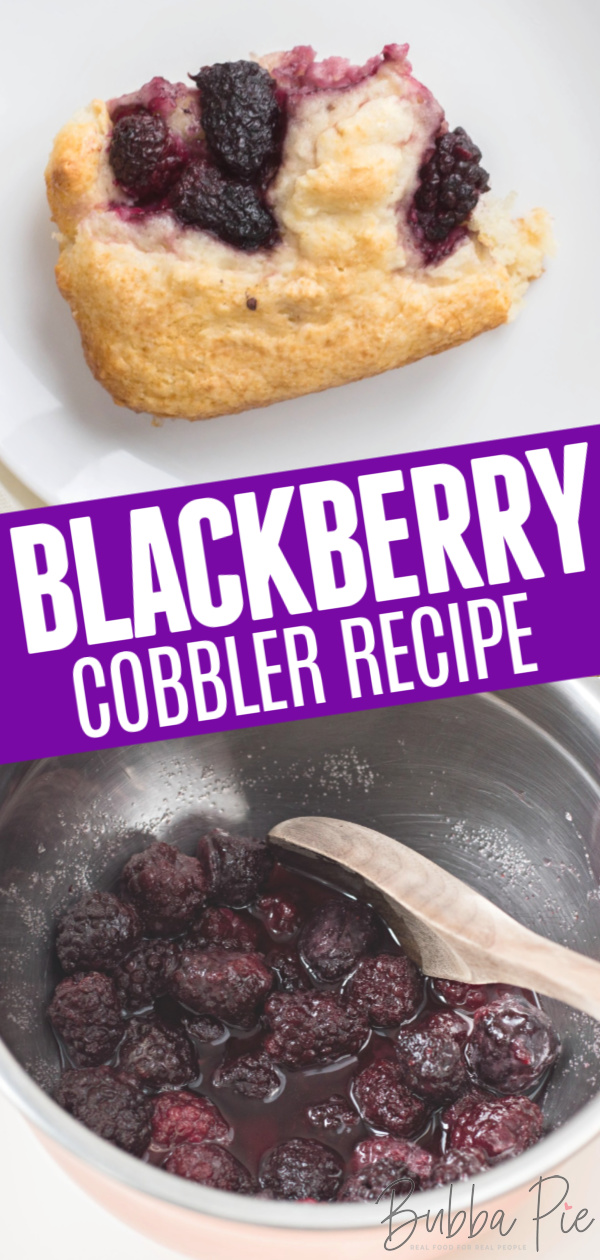 Blackberry Cobbler Pin 1